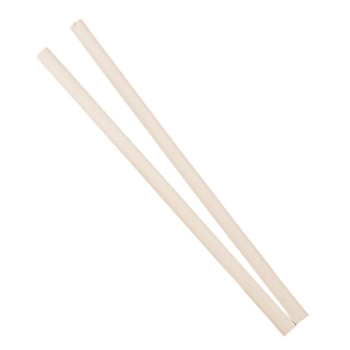 信仰軽食精算SODIAL(R) 2 xラインストーンピッカー鉛筆ツールネイルアート用/ボーナス製作用