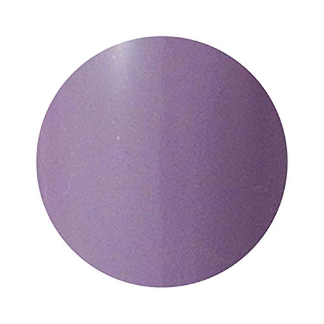 バドミントン団結する粘液PREANFA (プリアンファ) PREGEL Muse カラージェル ヴェールモーブ284 3g PGU-S284 ジェルネイル