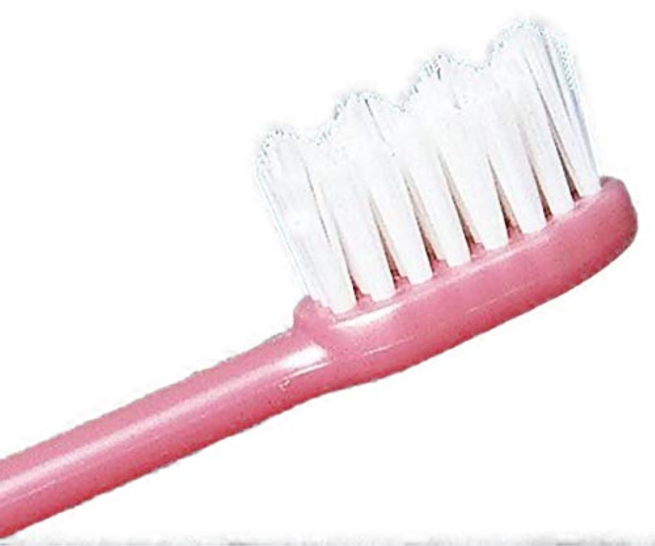 ゲート伴うつかまえるFJK ホワイト歯ブラシ「水だけのブラッシングでもOK!」3本セット