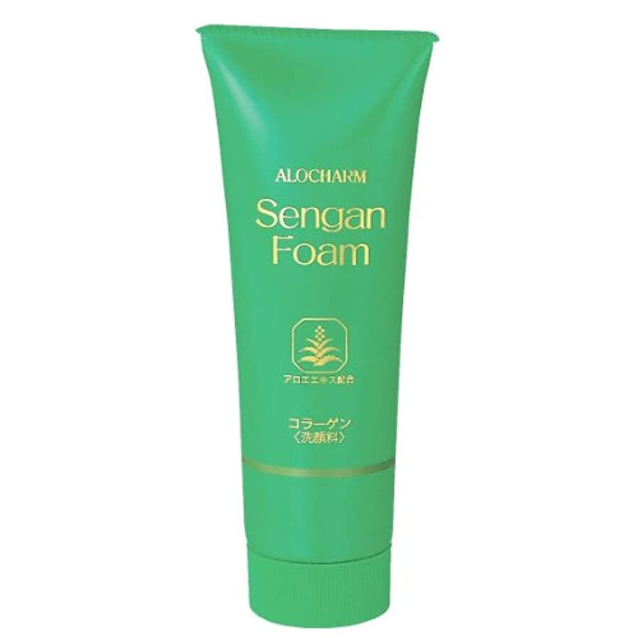 松冷ややかな厳しいアロチャーム 洗顔フォーム 120g 3本組