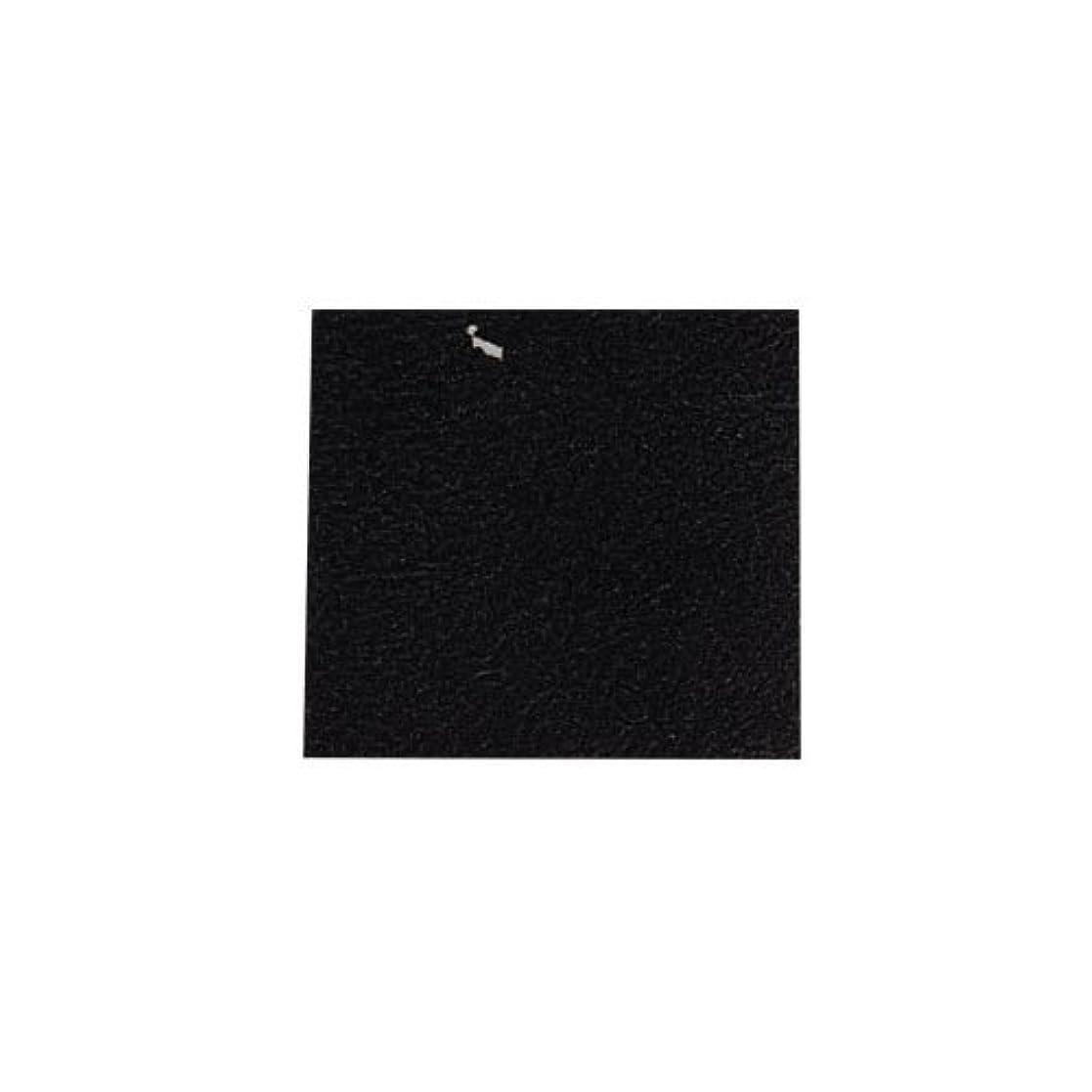 セイはさておき主要なテストピカエース ネイル用パウダー カラー純銀箔 #620 黒色 3.5㎜角×5枚
