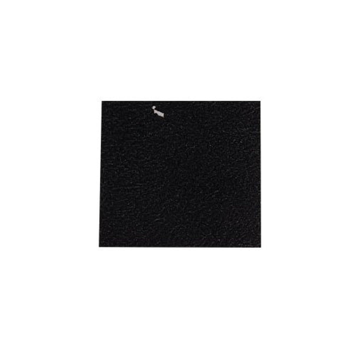 キャラバン限られた小学生ピカエース ネイル用パウダー カラー純銀箔 #620 黒色 3.5㎜角×5枚
