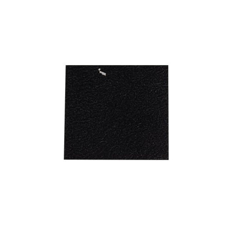 摂動グレートバリアリーフ暴力的なピカエース ネイル用パウダー カラー純銀箔 #620 黒色 3.5㎜角×5枚