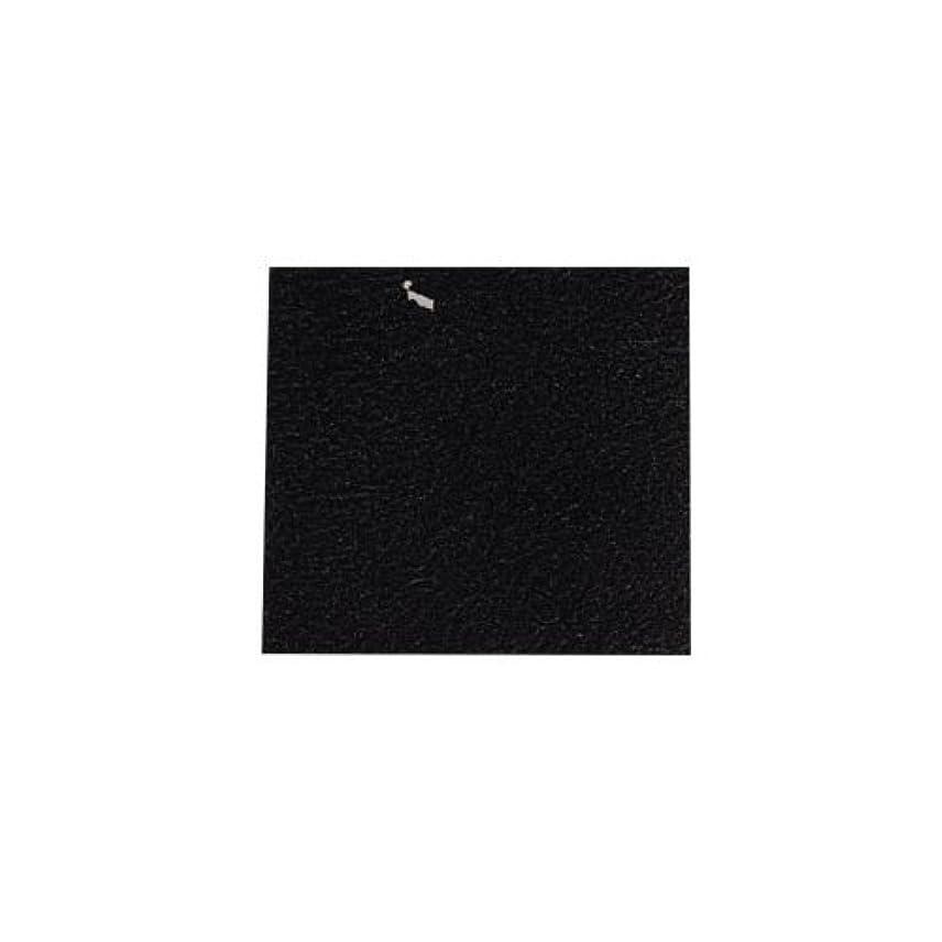 スキャンダラスこしょう多分ピカエース ネイル用パウダー カラー純銀箔 #620 黒色 3.5㎜角×5枚