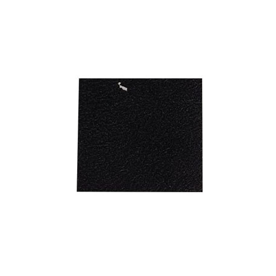 母音かび臭い豆ピカエース ネイル用パウダー カラー純銀箔 #620 黒色 3.5㎜角×5枚