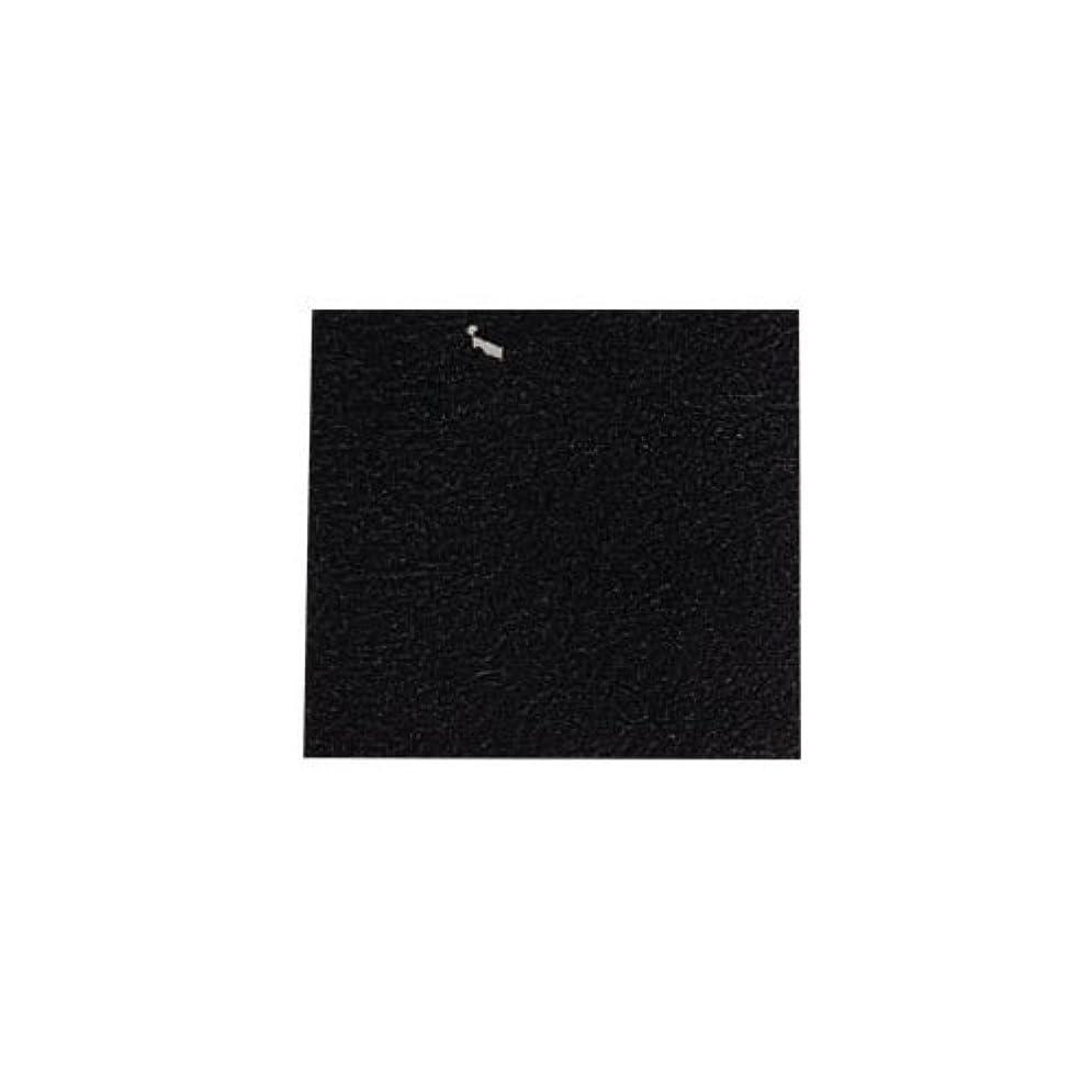 人気の付属品作成するピカエース ネイル用パウダー カラー純銀箔 #620 黒色 3.5㎜角×5枚