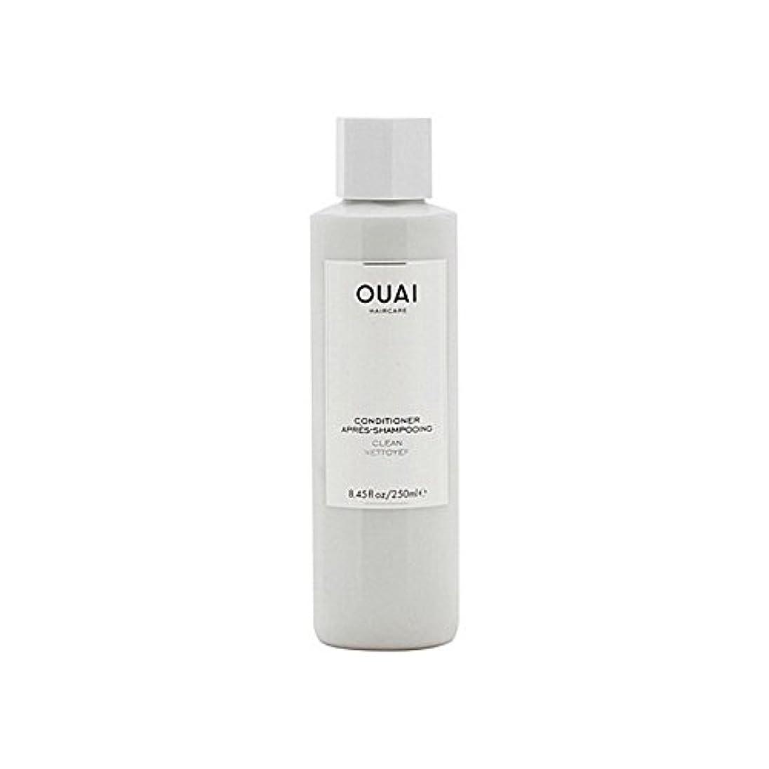 意義ミネラルサミュエルクリーンコンディショナー300ミリリットル x2 - Ouai Clean Conditioner 300ml (Pack of 2) [並行輸入品]