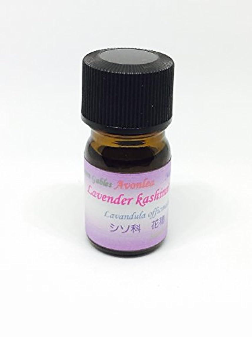 睡眠マーチャンダイジング軽食高原植物ラベンダー カシミール GⅡ 5ml 100% ピュアエッセンシャルオイル