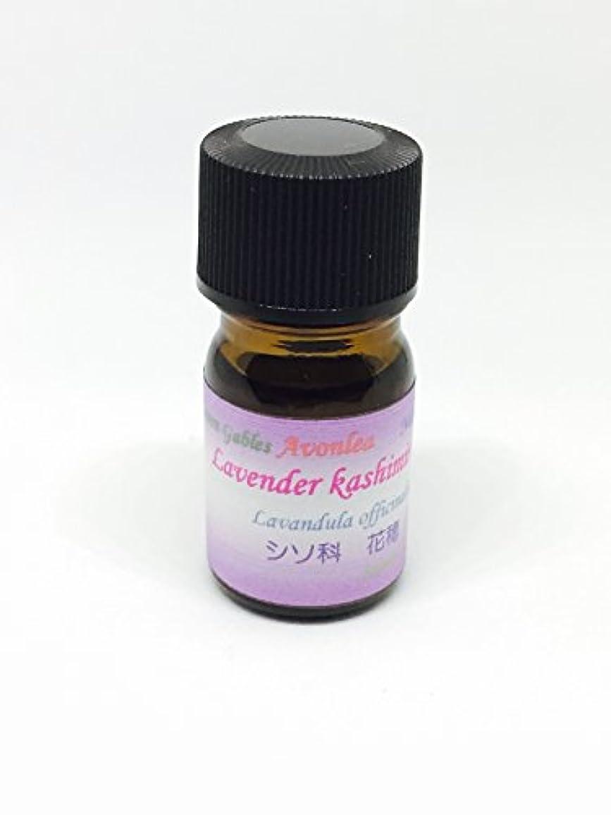 スリップシューズ継続中有限高原植物ラベンダー カシミール GⅡ 10ml 100%ピュアエッセンシャルオイル