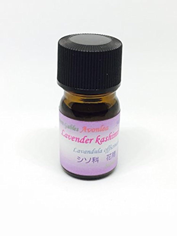 未知の蒸留する清める高原植物ラベンダー カシミール GⅡ 10ml 100%ピュアエッセンシャルオイル