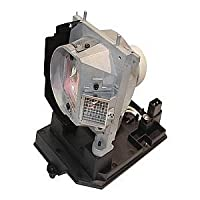 P Premium Power Products NP20LP-ER Compatible FP Lamp NEC: Projector Accessory [並行輸入品]