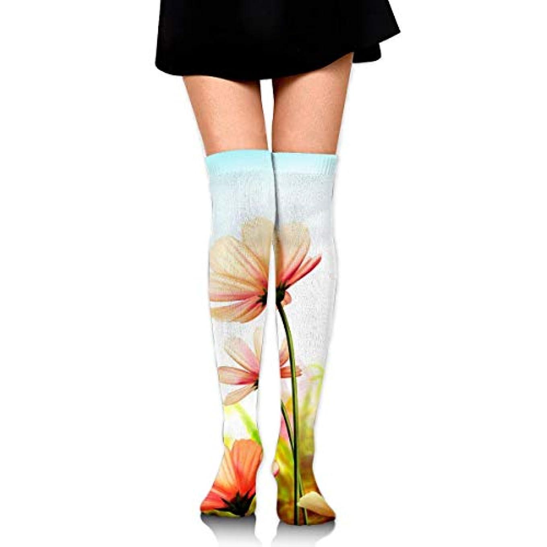 粘土うぬぼれ強いMKLOS 通気性 圧縮ソックス Breathable Extra Long Cotton Thigh High Beautiful Summer Flowers Socks Over Exotic Psychedelic...