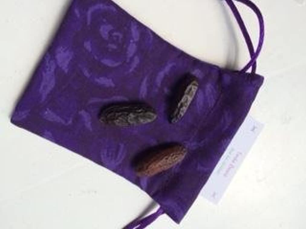 医師効率的コードTonka Beans – 3 Whole Beans with my hand made巾着ポーチ~プラスの特別な情報カード~手作りでRavenz Roost
