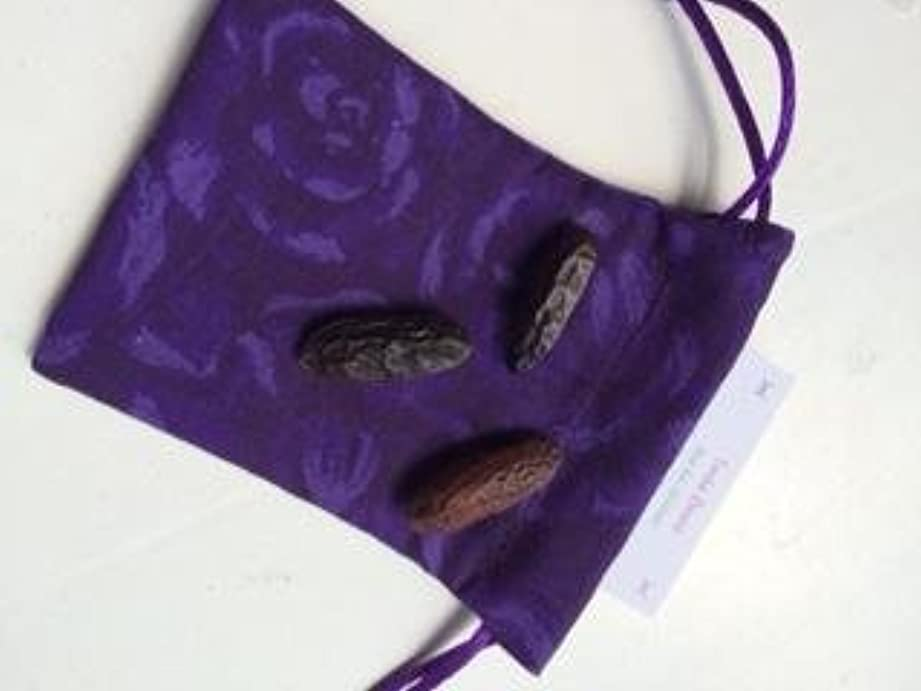 物質ブル代替Tonka Beans – 3 Whole Beans with my hand made巾着ポーチ~プラスの特別な情報カード~手作りでRavenz Roost