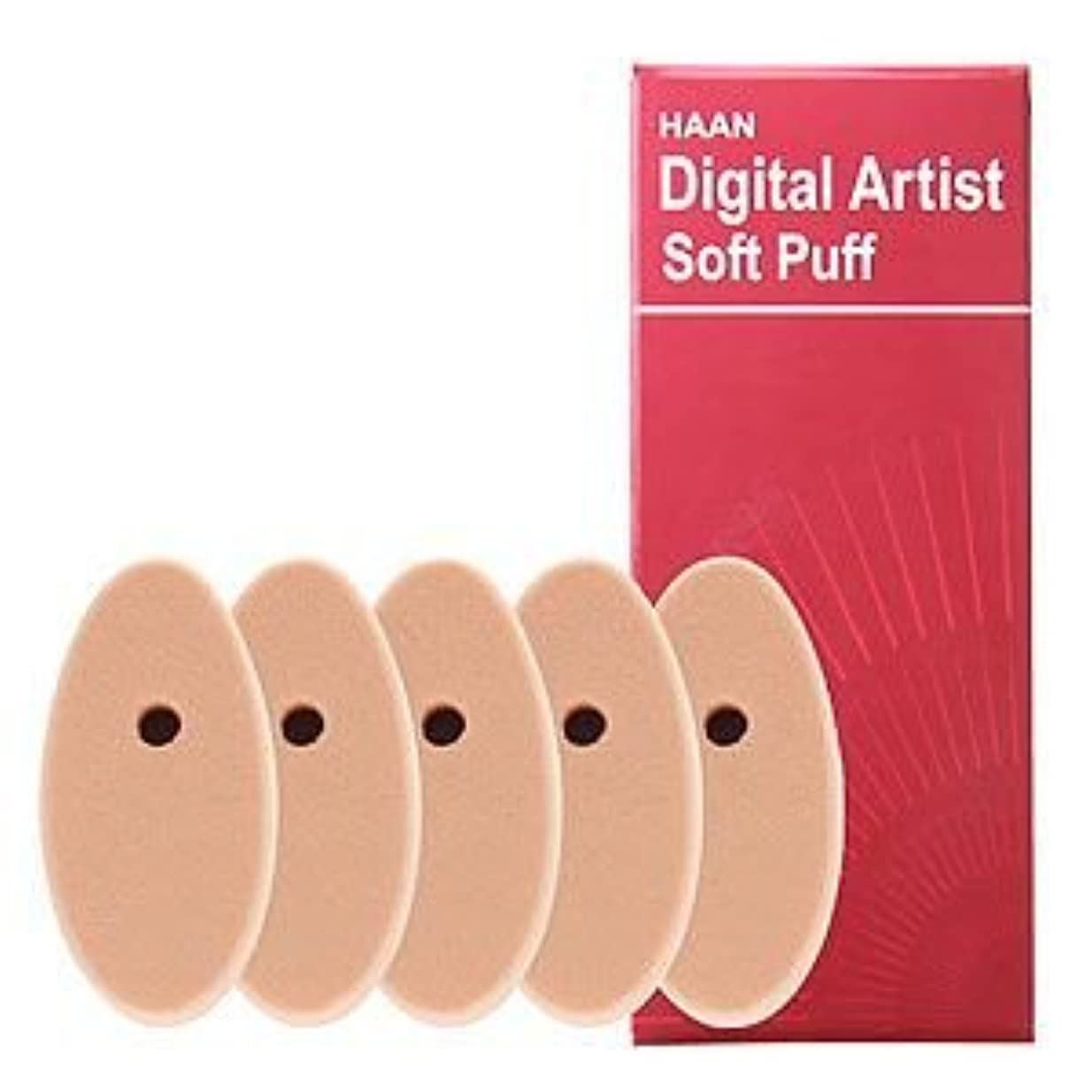 不忠一過性売り手HAANデジタルアーティストHAANデジタルアーティスト専用ソフトパフ5個