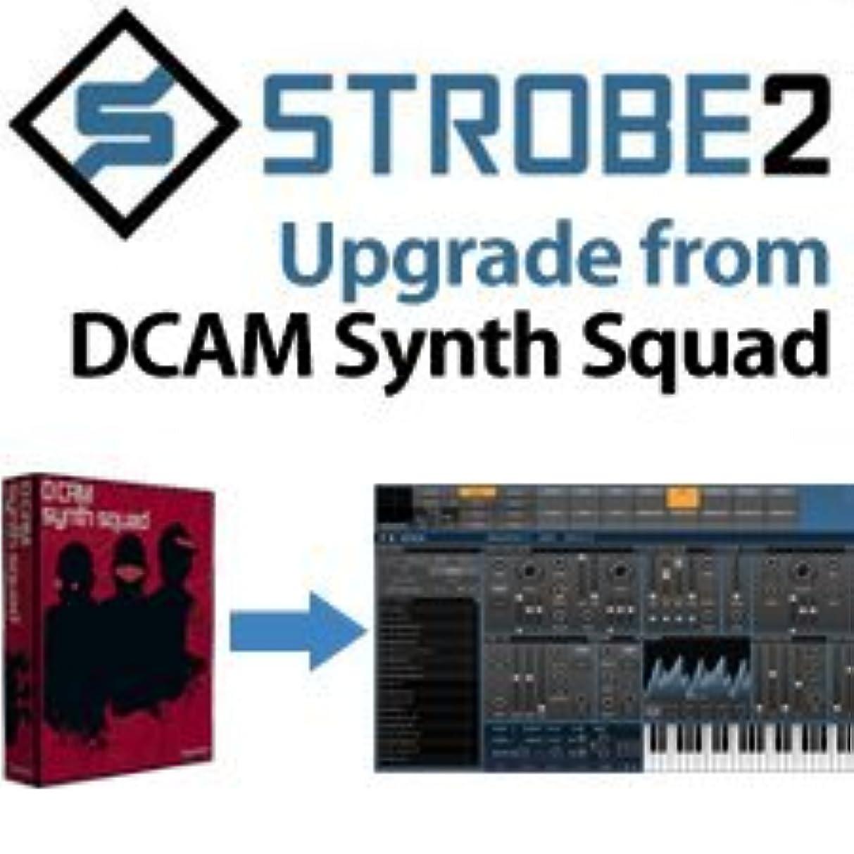 遡る教養がある前投薬【国内正規品】fxpansion STROBE2 Upgrade from DCAM Synth Squad アナログモデリング?パフォーマンス?シンセサイザー