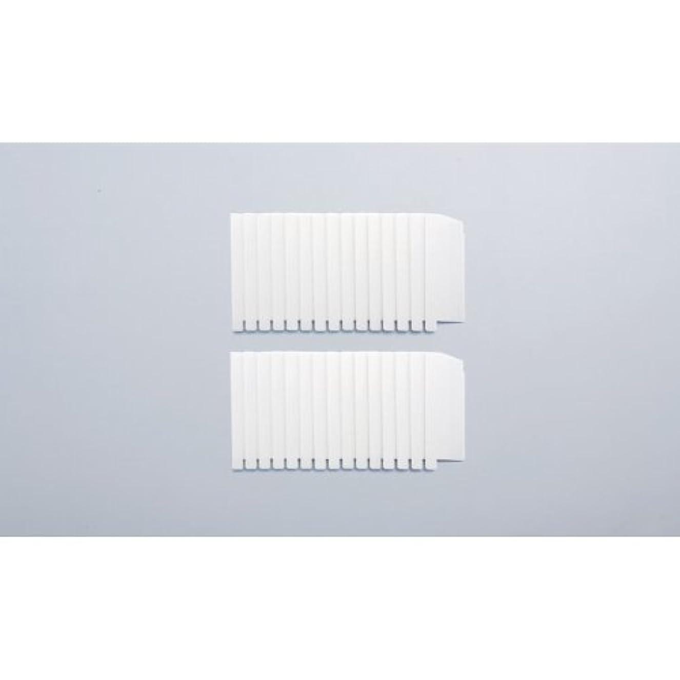 自発的静かにレインコートガイアモパーソナルタイプ 替えフィルター2セット組 119041