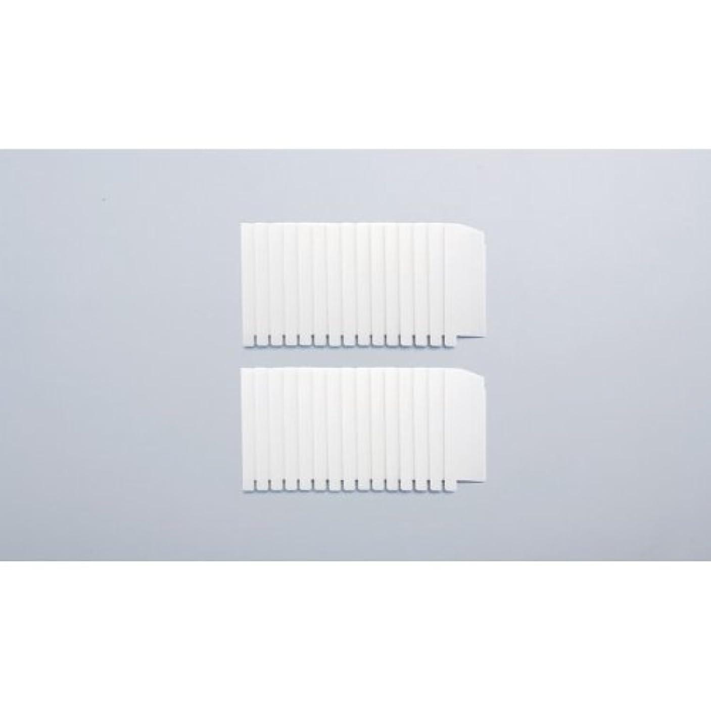 伝染病リダクター風邪をひくガイアモパーソナルタイプ 替えフィルター2セット組 119041