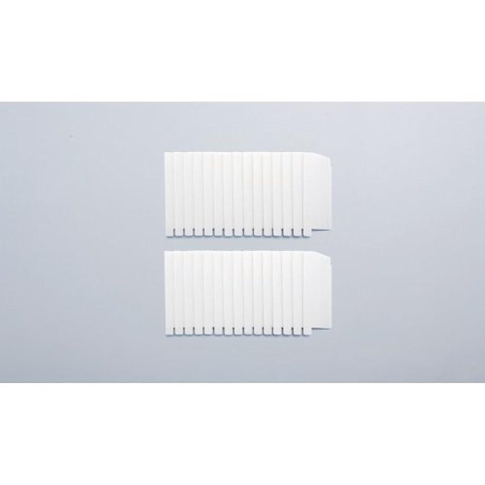 皮肉記念碑乳剤ガイアモパーソナルタイプ 替えフィルター2セット組 119041