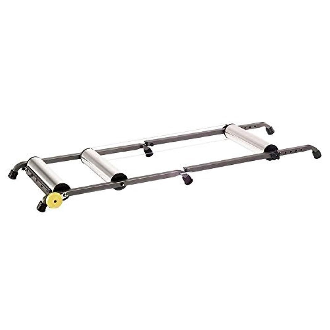 社交的明確な生物学CycleOps Aluminum Rollers with Resistance [並行輸入品]