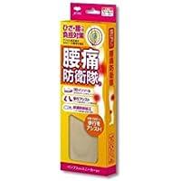 ACTIKA 腰痛防衛隊 No.246 女性用フリーサイズ 22.0-25.0cm