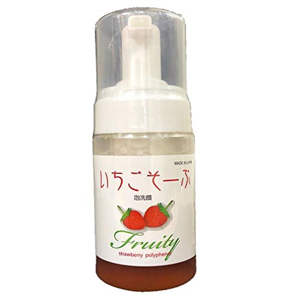 モーションフロント締め切りいちごそーぷ 泡洗顔料 100mL 超保湿を優しいフルーツで