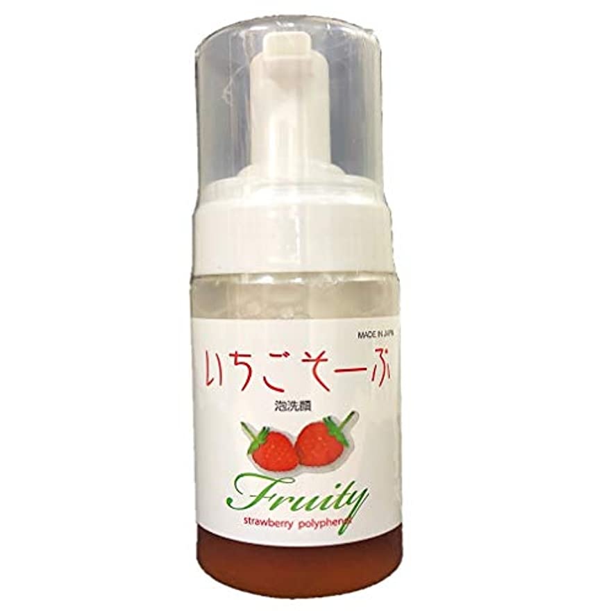 豊かな論争的チェリーいちごそーぷ 泡洗顔料 100mL 超保湿を優しいフルーツで