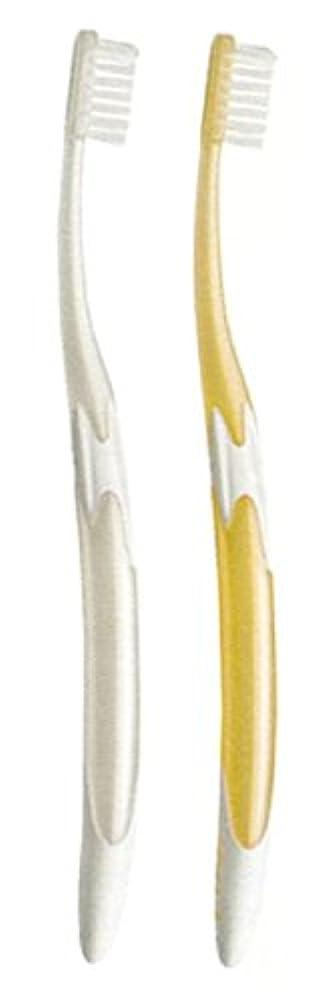 二十の量晩餐ジーシー GC ルシェロ W-10 歯ブラシ 6本 ( パールホワイト3本?パールゴールド3本 )