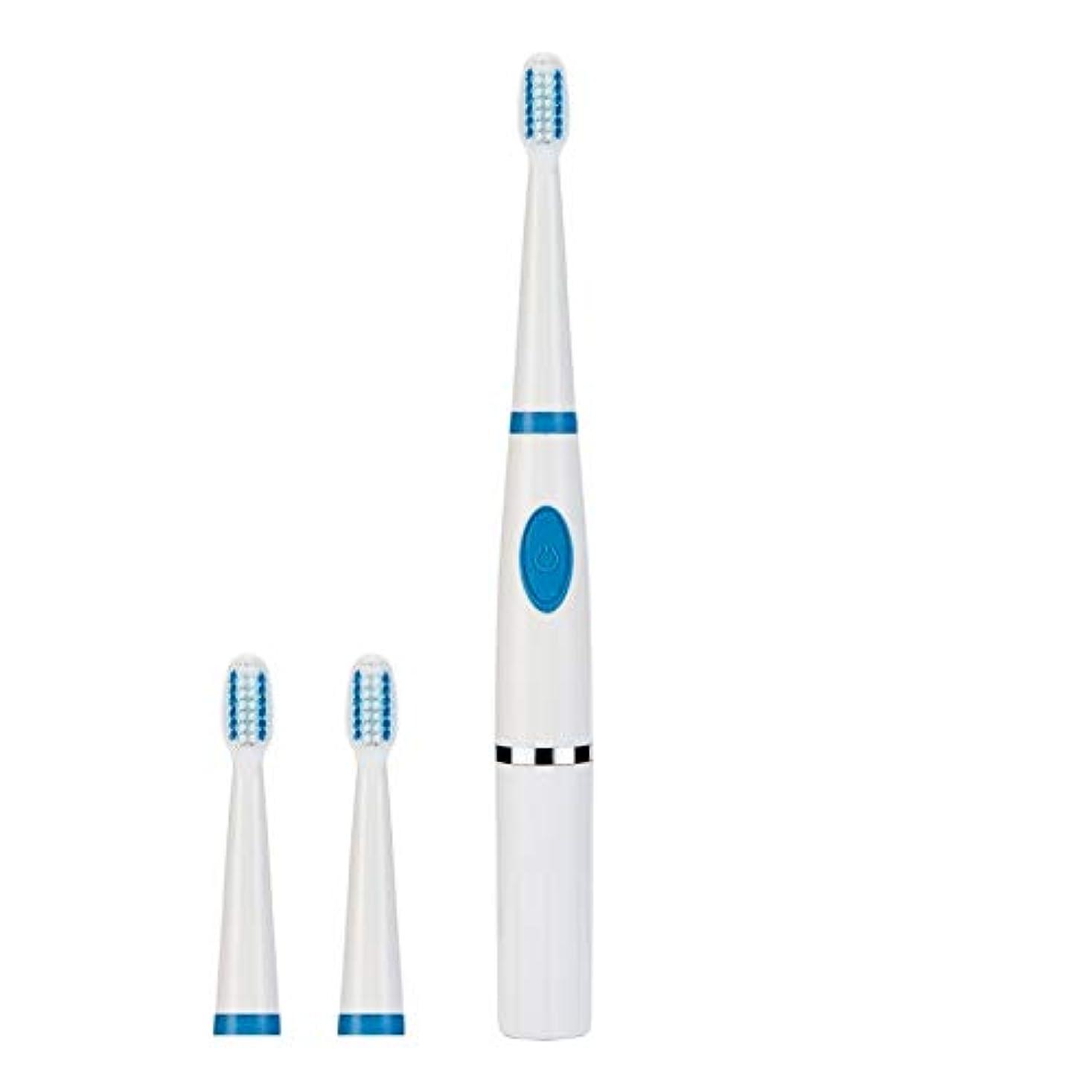 雇うコートロック解除YPZHEN 携帯用音波の電動歯ブラシのカップル旅行歯ブラシ (色 : Blue)