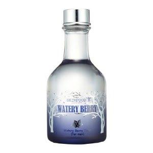 お肌への浸透がよくスキンフードSKINFOOD水分ベリートナー(化粧水) 男性用[並行輸入品]