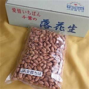 JA全農ちば 手作り料理用 生の落花生 むき実 [500g×1袋] 令和元年産