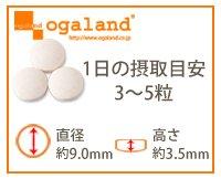 お徳用梅肉クエン酸 (540粒/約6ヶ月分)【123000110523002】