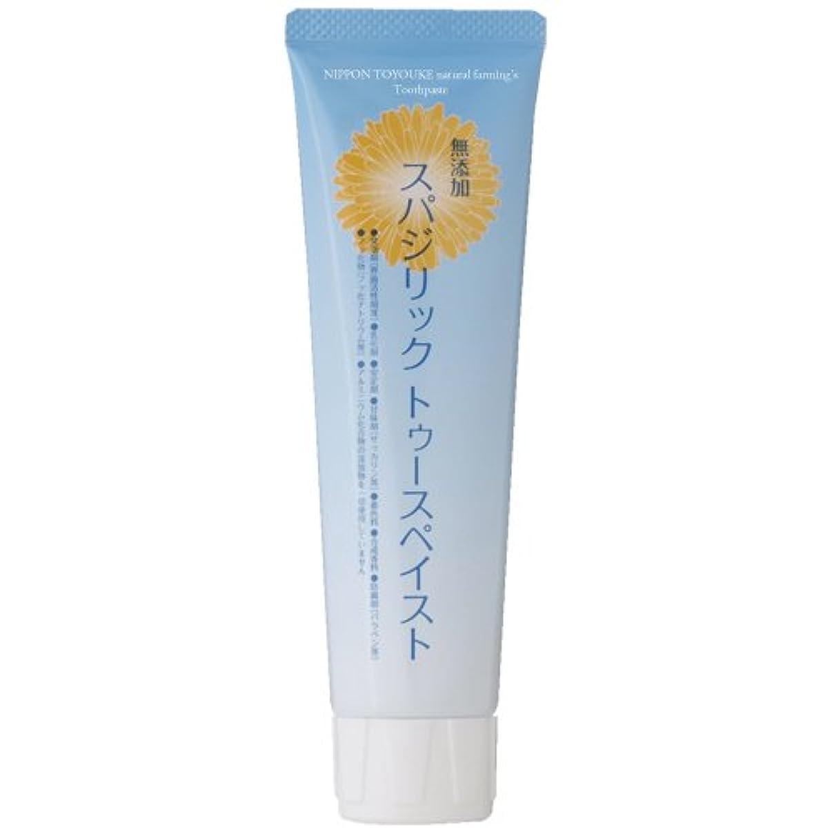 ミキサー摂氏度ピストル日本豊受自然農 スパジリックトゥースペイスト 100g