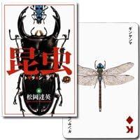 【松岡達英の描く昆虫の世界】昆虫トランプ