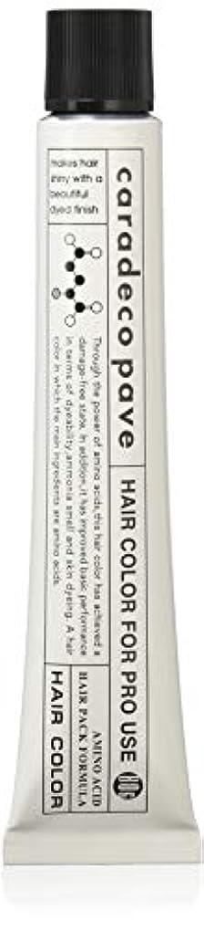 トランスペアレント困惑した裸中野製薬 パブェ カッパーBr 8p 80