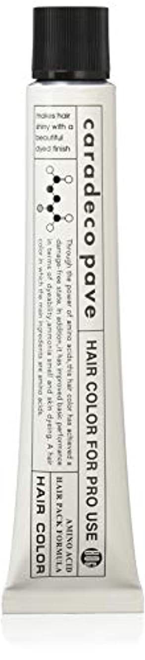 崩壊透ける乱雑な中野製薬 パブェ カッパーBr 8p 80
