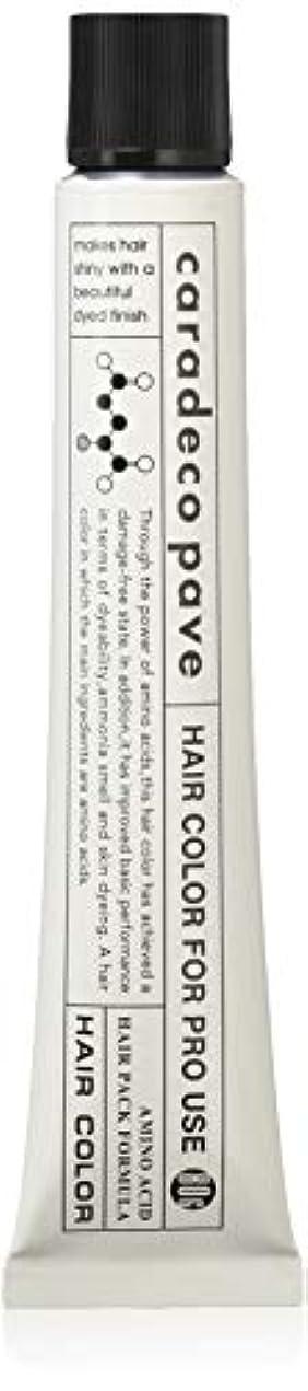 フェードアウト意味する素朴な中野製薬 パブェ アッシュBr Hp 80