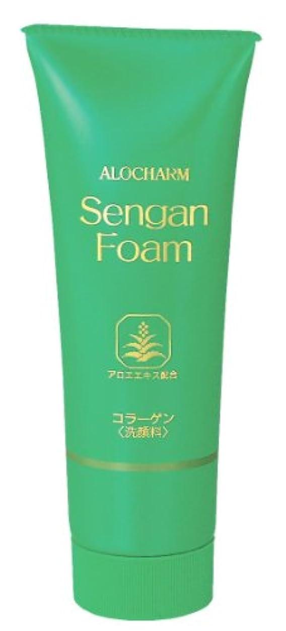 失効結紮熱望するアロチャーム 洗顔フォーム 120g