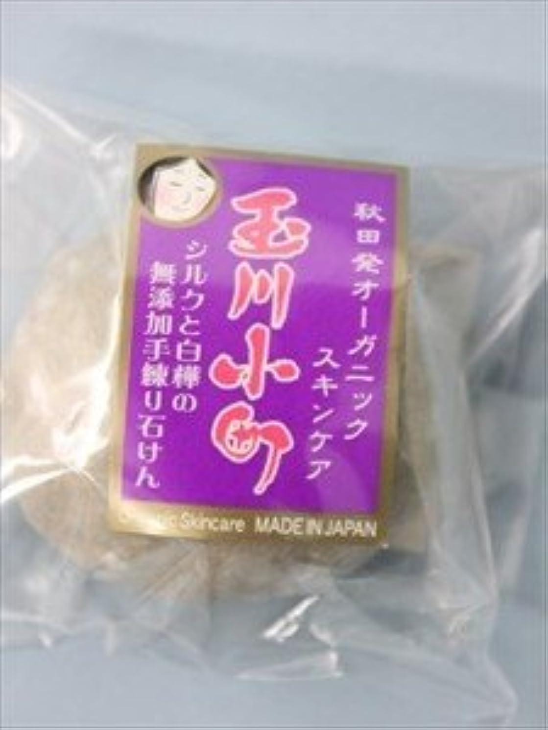 ソロ先史時代のカールオーセンネット 秋田 玉川小町せっけん 極 40g