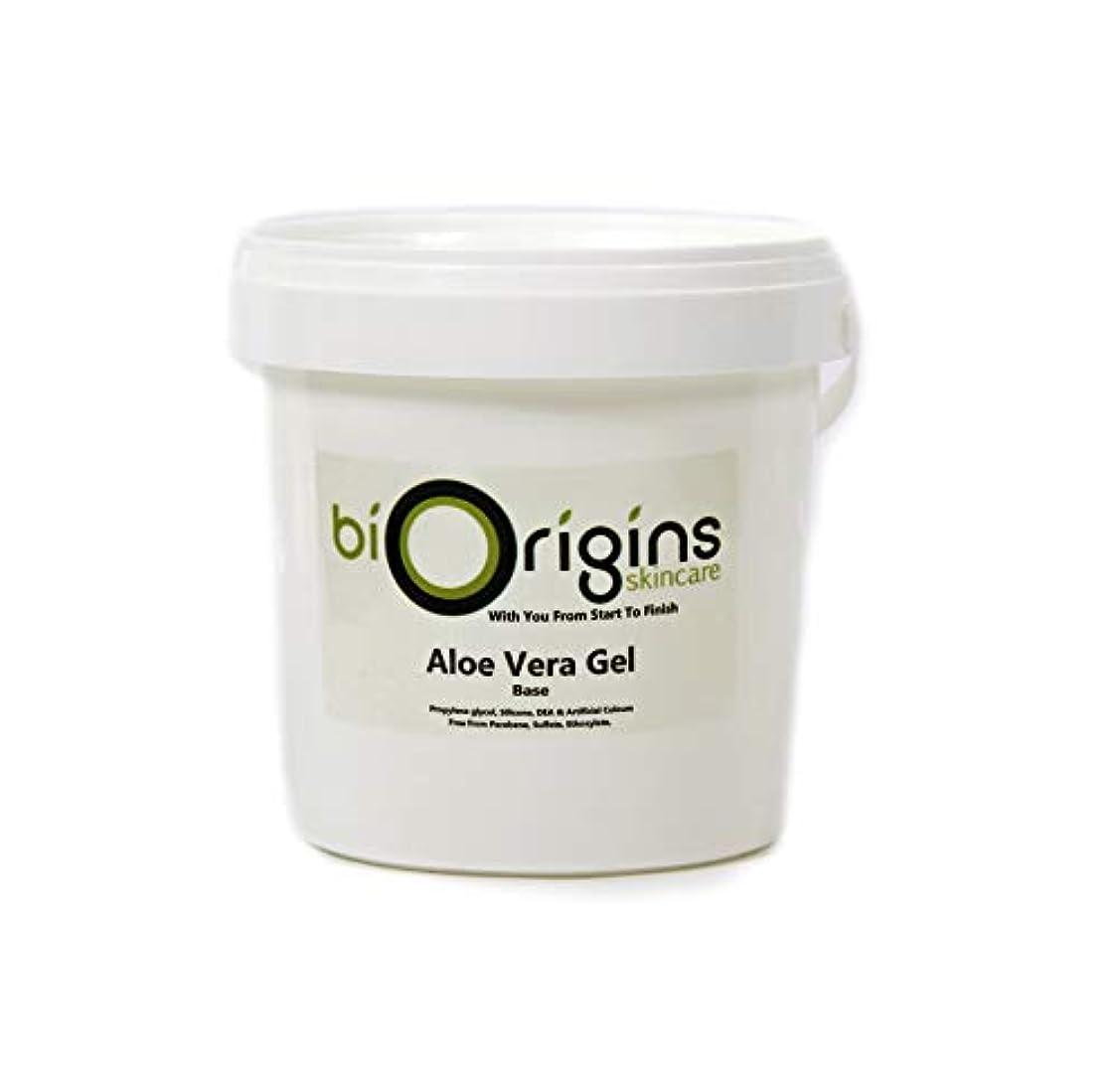 以降シャンパン投獄Aloe Vera Gel Skincare Base 1Kg