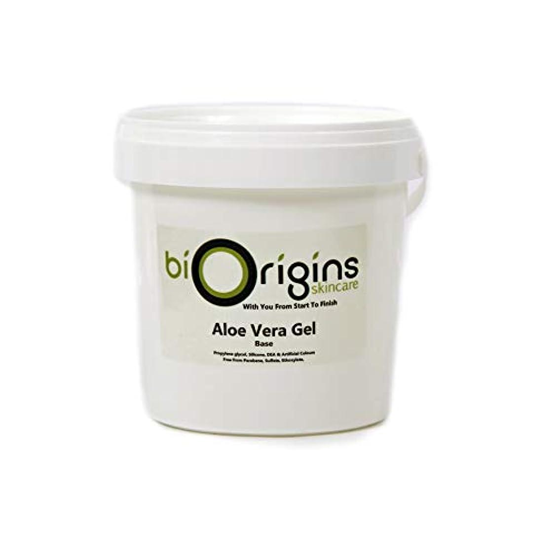 脇に夕暮れ参加するAloe Vera Gel Skincare Base 1Kg