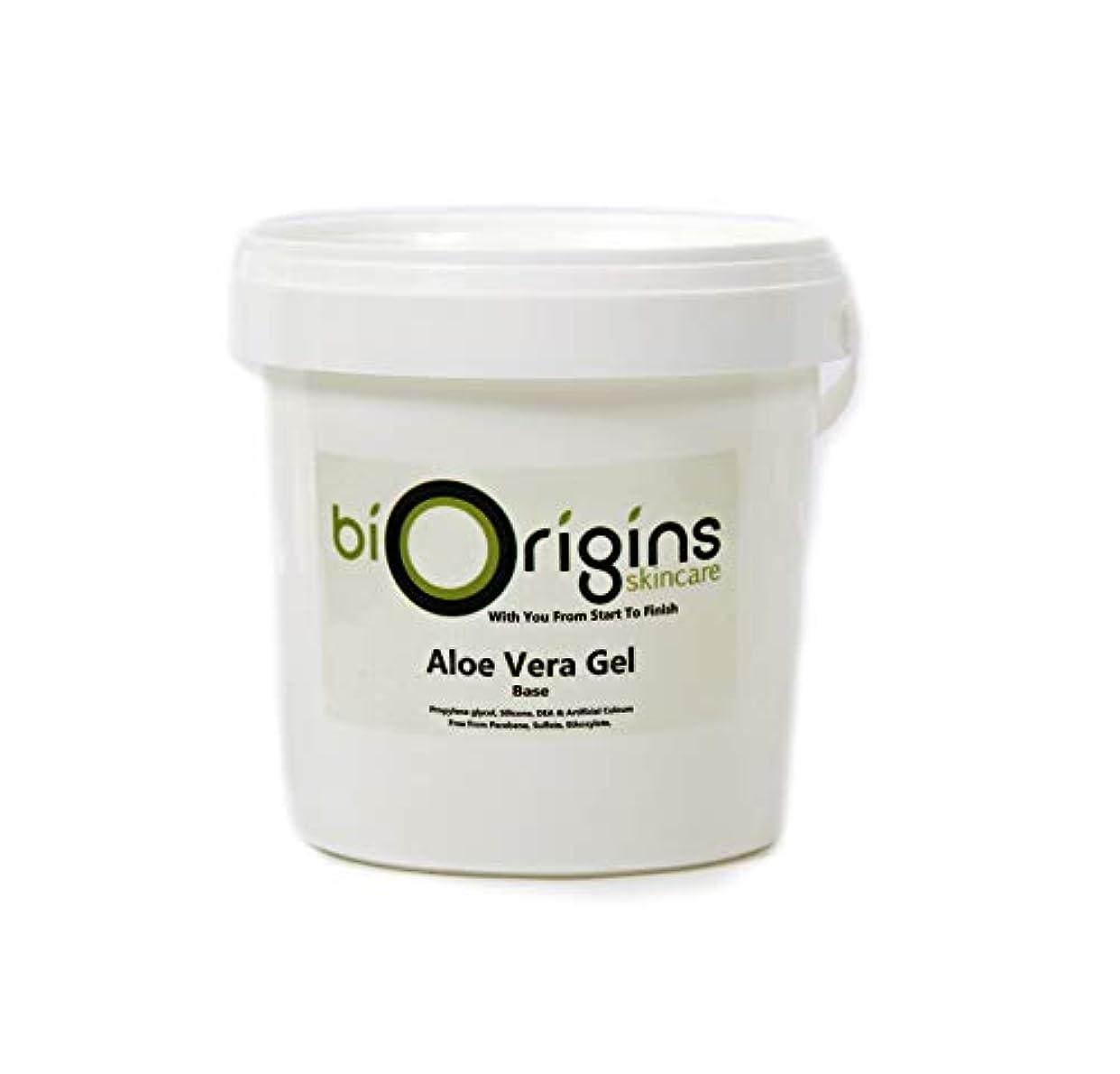 魔術覆す農学Aloe Vera Gel Skincare Base 1Kg