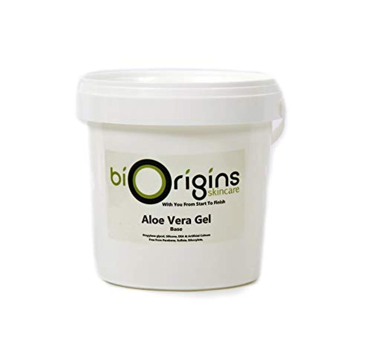 ツイン困った招待Aloe Vera Gel Skincare Base 1Kg