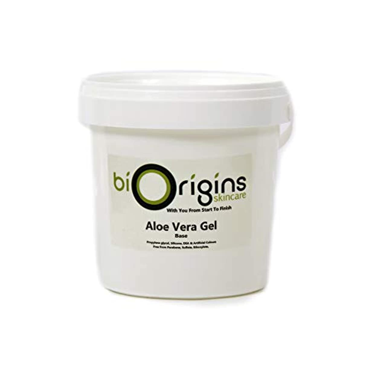 タイピスト電気陽性粗いAloe Vera Gel Skincare Base 1Kg