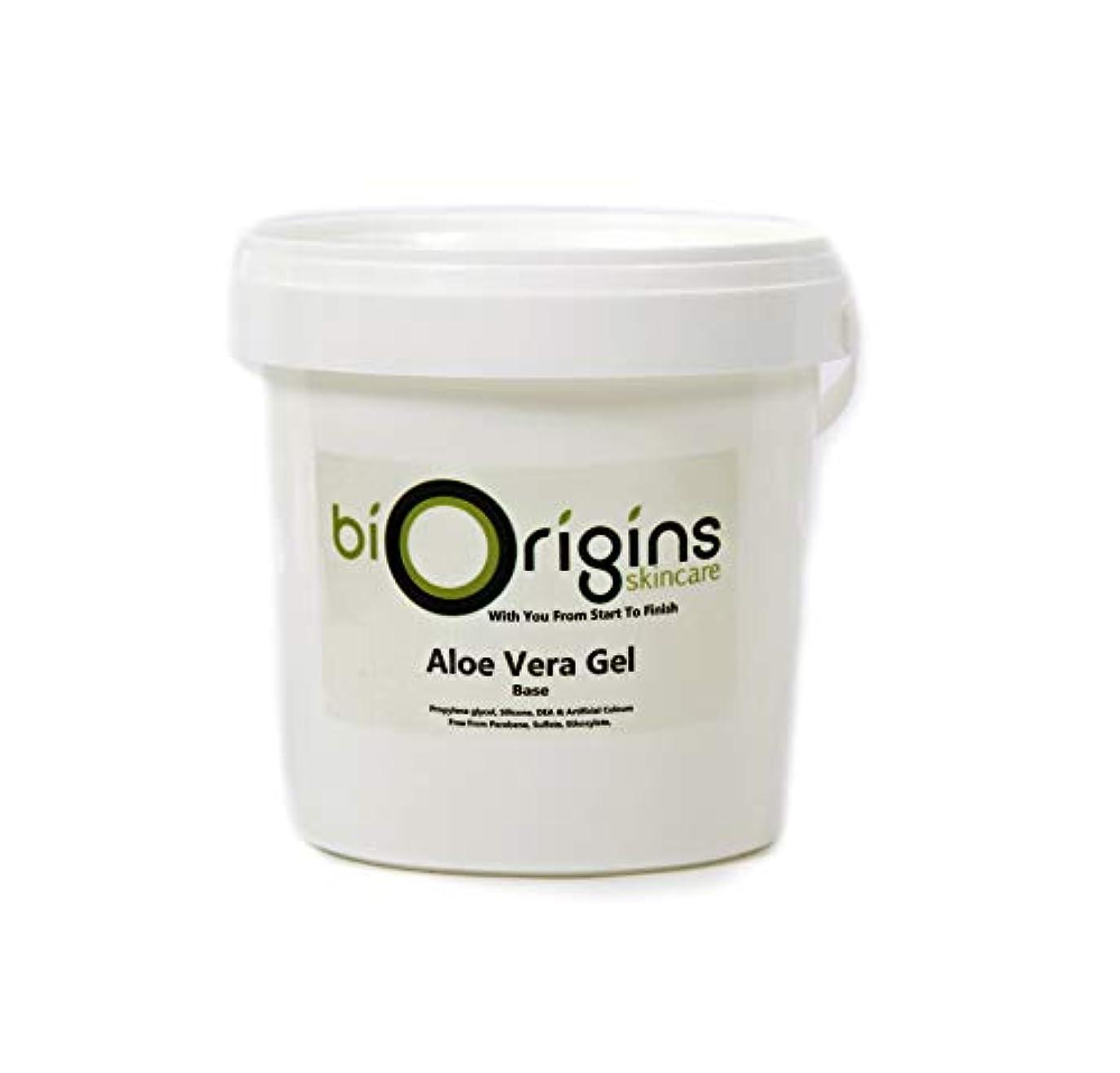 同様にファイナンスアコーAloe Vera Gel Skincare Base 1Kg