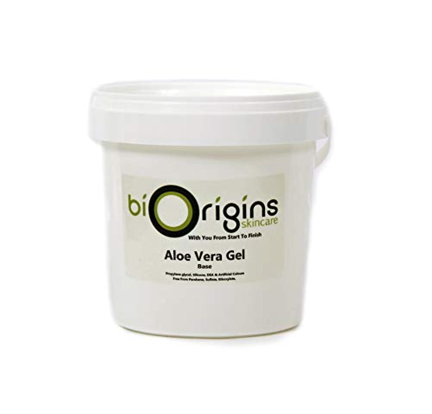 今日どれか農民Aloe Vera Gel Skincare Base 1Kg