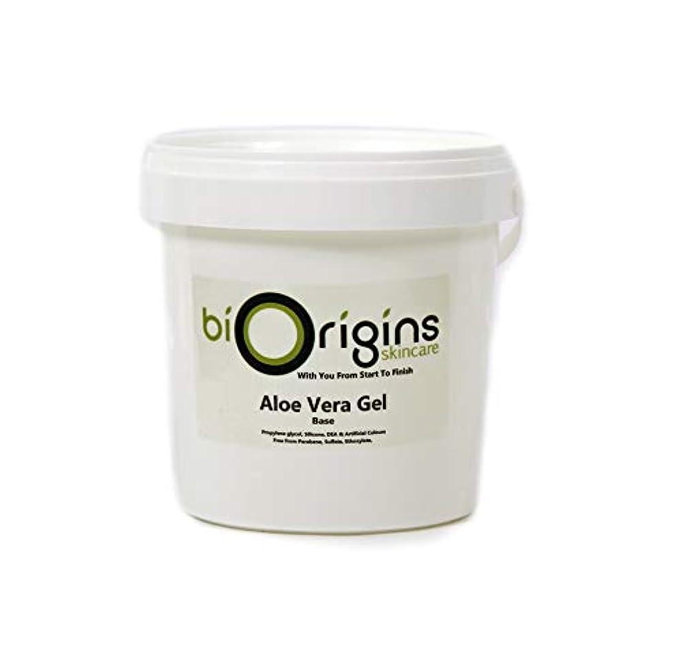 ロール販売員レトルトAloe Vera Gel Skincare Base 1Kg