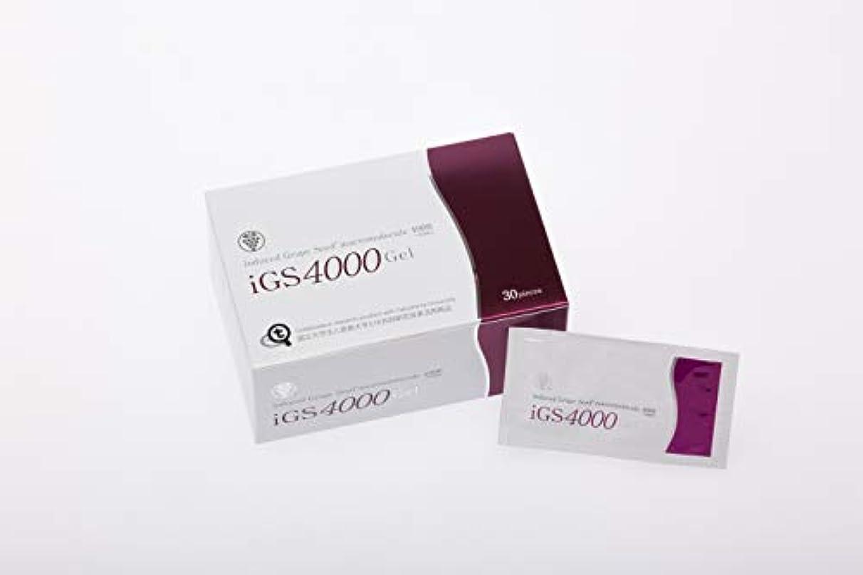 副貧しい間違えたiGS4000Gel 30包
