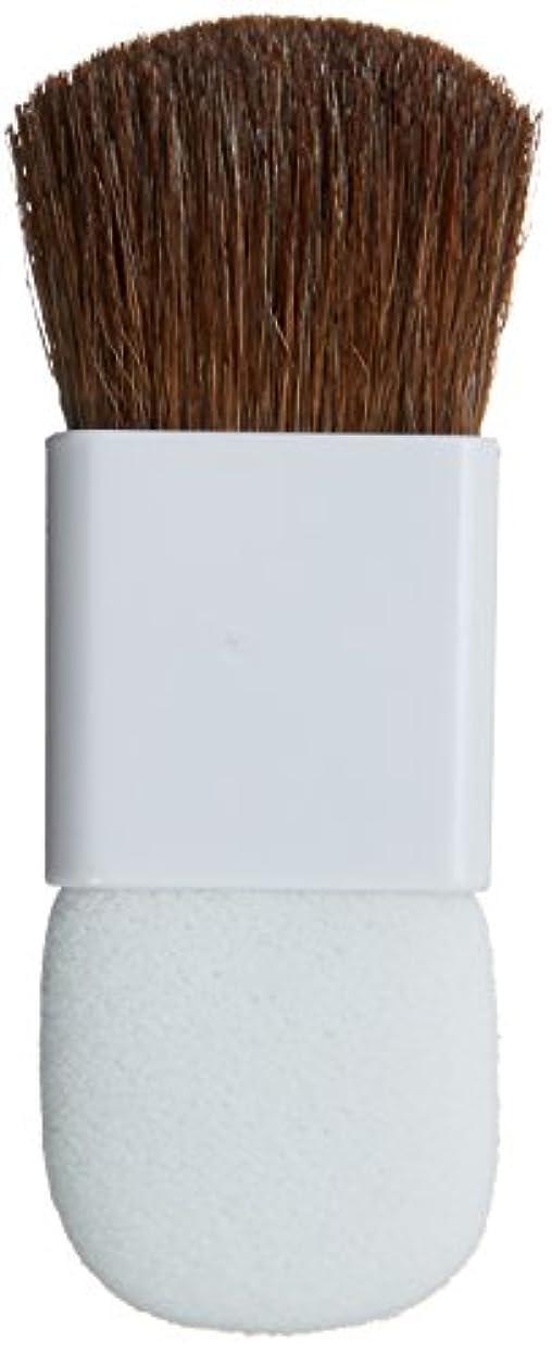 破壊するリングレット希少性チップ&ブラシ(白)