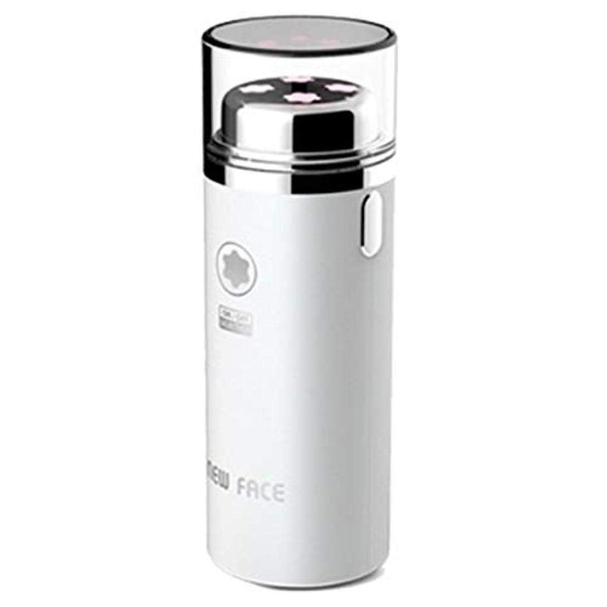 ハロウィン心臓自発的エラニューフェイスガルバニックマイクロ振動イオンスキンマッサージャーEFM-2500ホワイト Elra New Face Galvanic Micro Vibration Ion Skin Massager EFM-2500 White [並行輸入品]